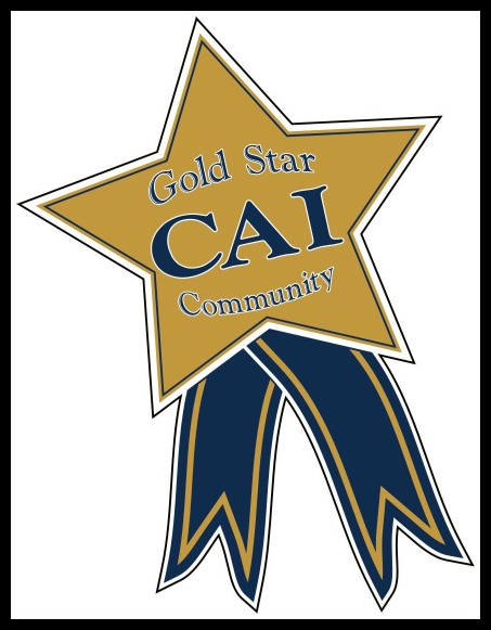 CAI Gold Star Community Award